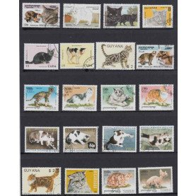 50Pcs/Lot Cat All Different From Many Countries NO Repeat Unused Postage Stamps for Collecting